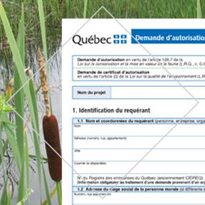 Service Demande de certification d'autorisation d'Environnement PH - Firme d'experts conseil en environnement œuvrant dans le domaine de la gestion environnementale